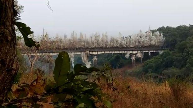 VIDEO : काही सेकंदांचा अवधी, पूल जमीनदोस्त