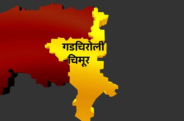 Gadchiroli Lok Sabha Results : गडचिरोली लोकसभा निकाल 2019