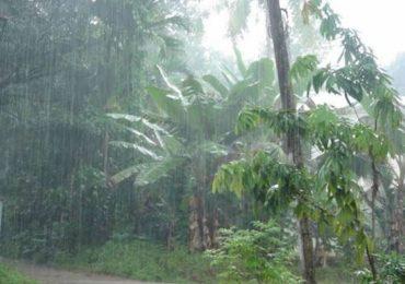 Maharashtra Monsoon Rain | मुंबई, पुण्यात मान्सूनची हजेरी, पुढील पाच दिवस कुठे-कुठे पावसाची शक्यता?
