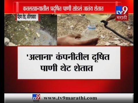 औरंगाबाद : कत्तलखान्यातील दूषित पाणी शेतात, पैठण रोडवरील शेतकऱ्यांची व्यथा
