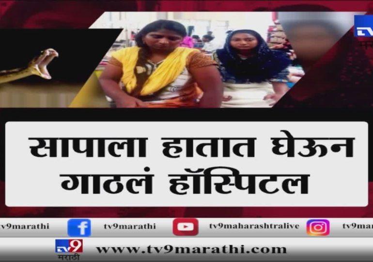 मुंबई : मुलीला वाचवण्यासाठी आईची सापाशी झुंज