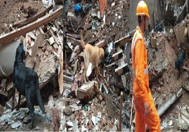 डोंगरी इमारत दुर्घटना : 18 तास उलटूनही बचाव कार्य सुरू, मृतांचा आकडा वाढण्याची भीती