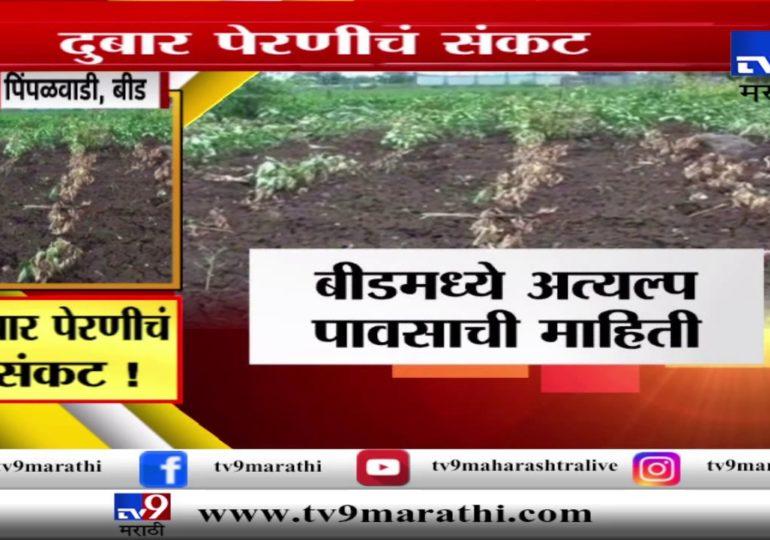 बीड : शेतकऱ्यांवर दुबार पेरणीचं संकट, पावसाअभावी बळीराजा बेहाल