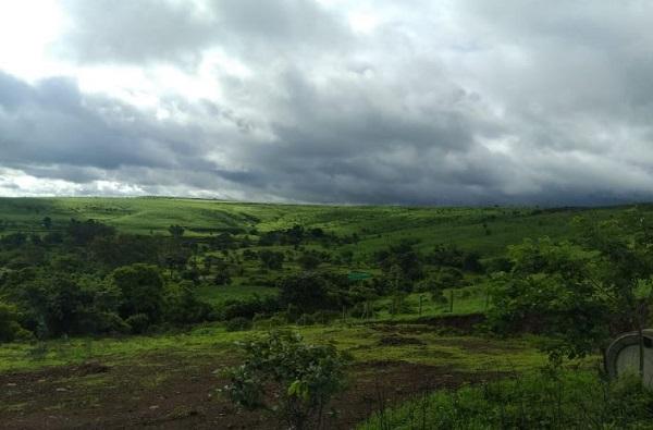 पुढील पाच दिवसात विदर्भात तुरळक पाऊस, नागपूर हवामान विभागाचा अंदाज