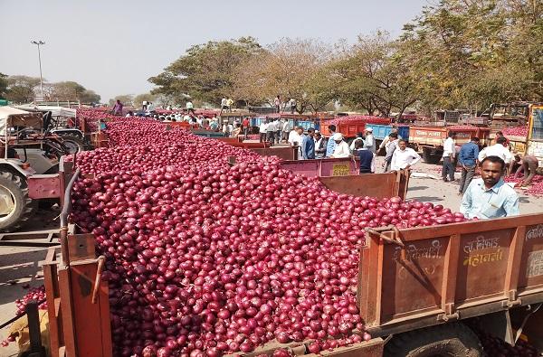 मुंबईत कांद्याचा तुटवडा, थेट इजिप्तवरुन कांदा मागवला