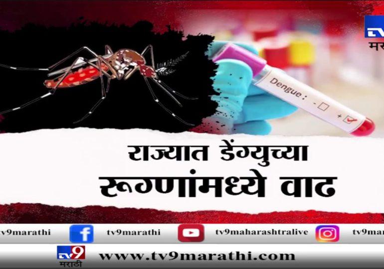 पुणे : राज्यात डेंग्यूचे रुग्ण वाढले, वातावरण बदलाचा परिणाम