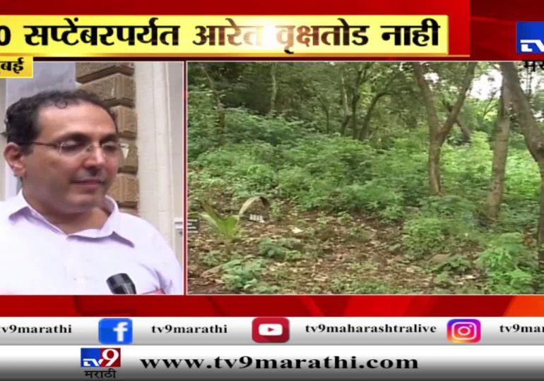 मुंबई : आरेत 30 सप्टेंबरपर्यत वृक्षतोड नाही