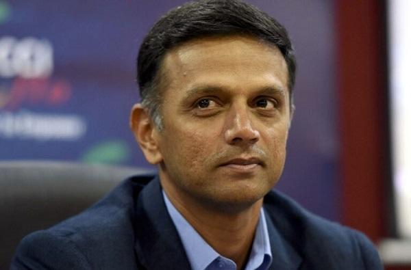 'बीसीसीआय'कडून राहुल द्रविडला क्लीन चीट