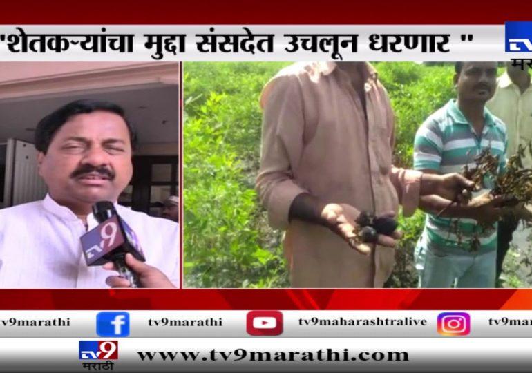VIDEO: शेतकऱ्यांचा मुद्दा संसदेत उचलून धरणार : सुनील तटकरे