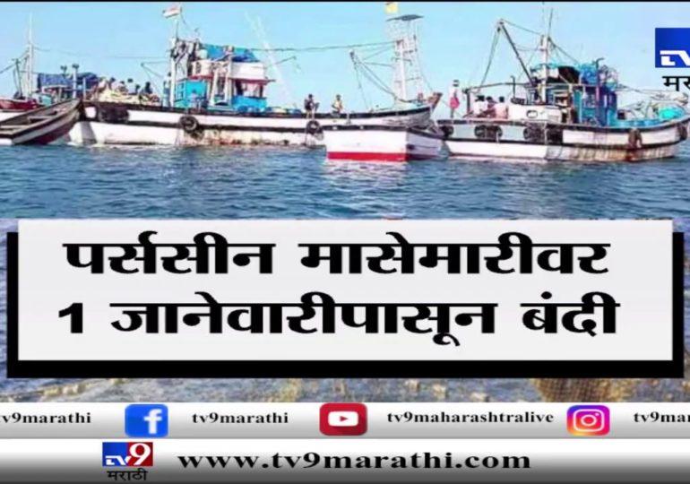 स्पेशल रिपोर्ट : 1 जानेवारीपासून 'पर्ससीन' मासेमारीवर बंदी