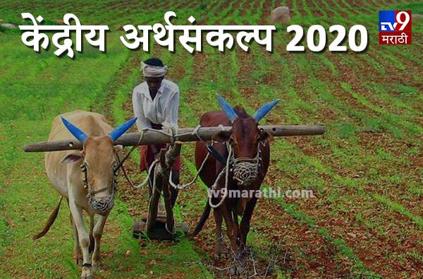 Budget 2020: शेतकऱ्यांसाठी अर्थसंकल्पात काय? 16 कलमी कार्यक्रमाची घोषणा
