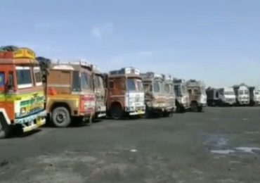 चंद्रपूरमध्ये कोळशाचं मोठं रॅकेट उघड, 24 ट्रक पोलिसांच्या ताब्यात
