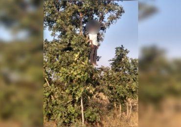 संसार घराबाहेर फेकला, शिवीगाळ करत मारहाण, सावकारी जाचाला कंटाळून शेतकऱ्याची आत्महत्या