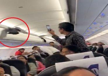 'गो-एअर'च्या विमानात कबुतर, प्रवाशांचा गोंधळ, एअर हॉस्टेसची धावाधाव