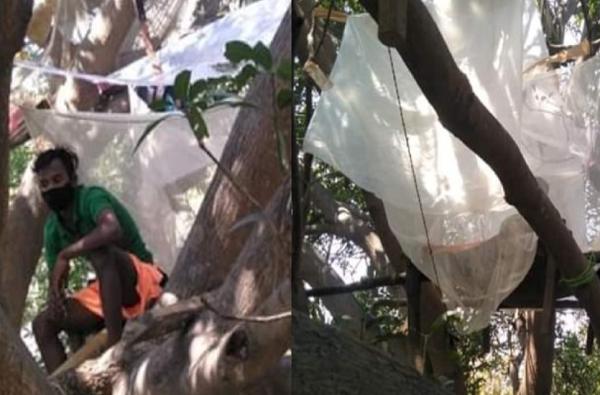 लॉकडाऊनमुळे मजुरांची गावाकडे धाव, घरात वेगळी रुम नसल्यानं झाडावर क्वारंटाईन