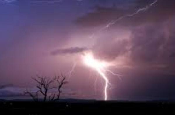 सातारा कोल्हापूरमध्ये मुसळधार पाऊस, कुठे गारांचा वर्षाव, तर कुठे वादळाने झाडांची पडझड