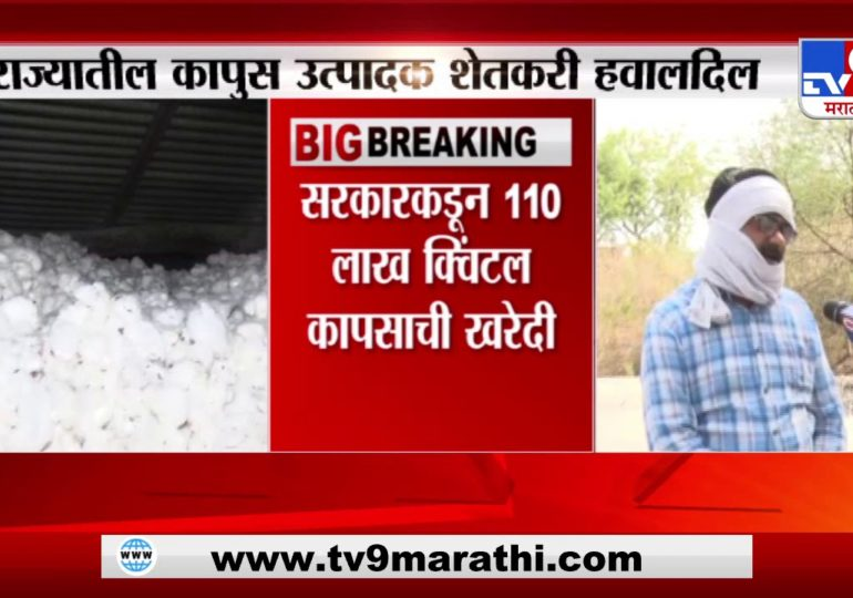 Breaking News | सरकारकडून 110 लाख क्विंटल कापसाची खरेदी