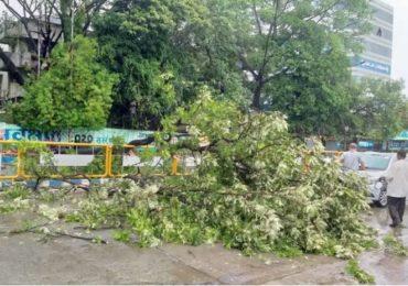 Cyclone Nisarga | मुंबई-अलिबागमध्ये झाडं कोसळली, पुण्यात धावत्या कारवर झाड पडले, जीवितहानी नाही