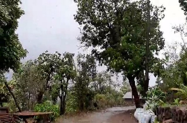 Cyclone Nisarga Effect In Pune