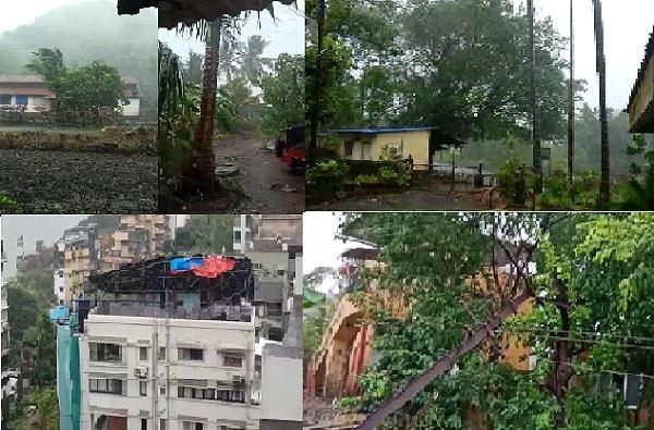 PHOTO   झाडांची पडझड, पत्रे उडाले, 'निसर्ग' चक्रीवादळाचं रौद्र रुप