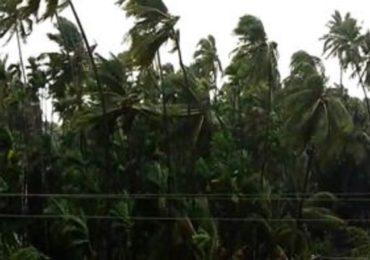 Cyclone Nisarga   केंद्रीय पथक रायगड जिल्ह्याच्या दौऱ्यावर, चक्रीवादळाने झालेल्या नुकसानाची पाहणी