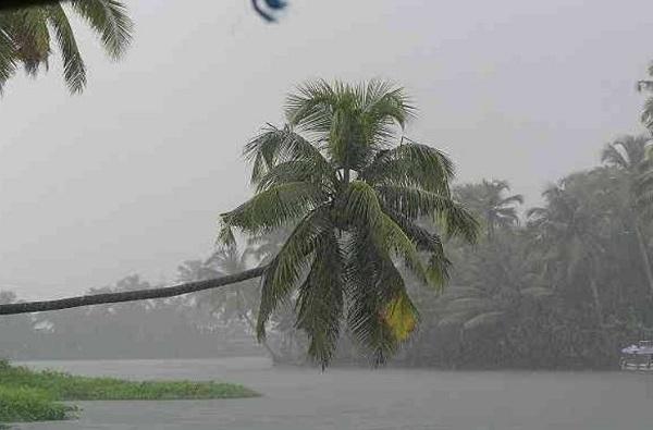 Monsoon Rain   महाराष्ट्रात पुढील चार दिवस मुसळधार पाऊस, घाट-माथ्यावर दरडी कोसळण्याचा इशारा