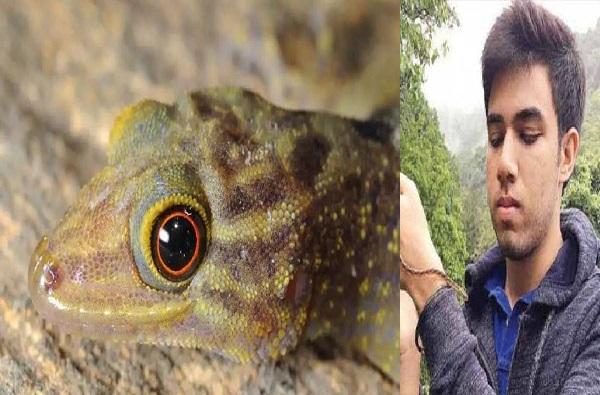 Tejas Thackeray | 'बोईगा ठाकरे'नंतर तेजस ठाकरेंनी पालीची दुर्मिळ प्रजाती शोधली