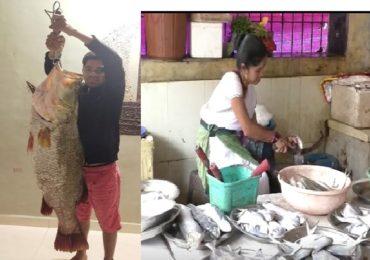 मत्स्यप्रेमींना हवाहवासा 'जिताडा' उरणमध्ये सापडला, 35 किलोच्या माशाची किंमत ऐकून थक्क व्हाल!