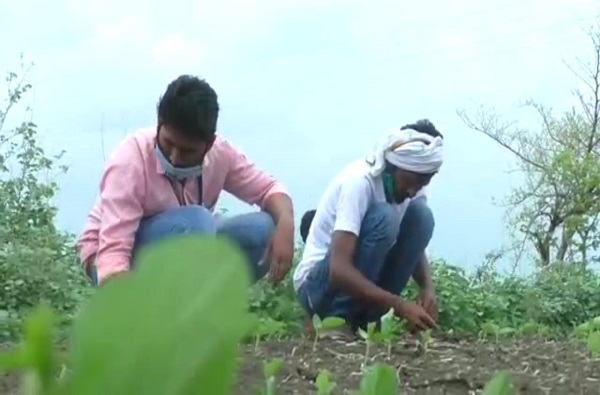 वर्ध्यातील शेतकऱ्यांची कर्जमाफीची नवी यादी जाहीर, आतापर्यंत 44 हजार शेतकऱ्यांच्या खात्यात 392 कोटी जमा