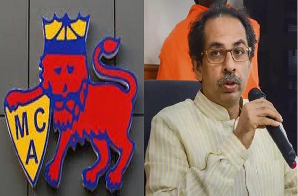 क्रिकेट सरावासाठी परवानगी द्या, MCA चं मुख्यमंत्री उद्धव ठाकरेंना पत्र