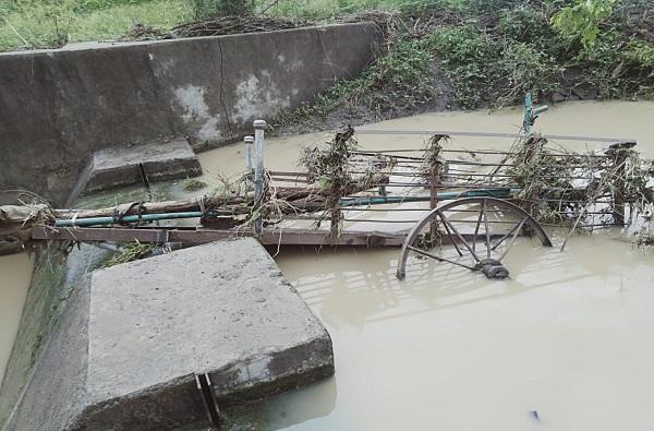Wardha Rain | वर्ध्यात पुरात वाहून गेल्याने चौघांचा मृत्यू, 12 वर्षीय नातू आणि आजोबाही बुडाले
