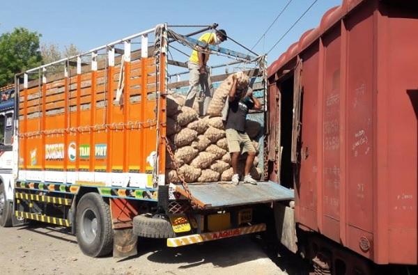 नाशिकचा कांदा बांगलादेशला, एक लाख मेट्रिक टन कांद्याची निर्यात