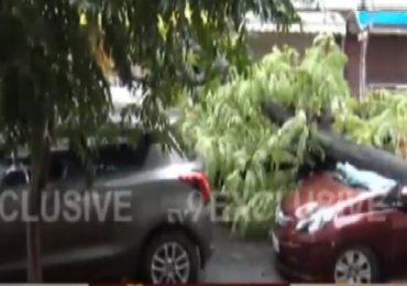 Mumbai Rains Live | मुंबई-ठाण्यात पावसाचा जोर कायम, सोसाट्याच्या वाऱ्याने झाडं पडली