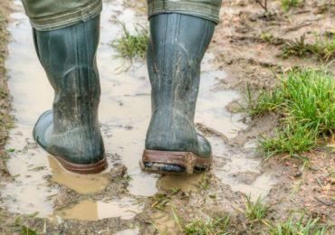 Leptospirosis | 'लेप्टो'चा धोका! पायाला जखम असल्यास पावसाच्या पाण्यातून चालणे टाळा