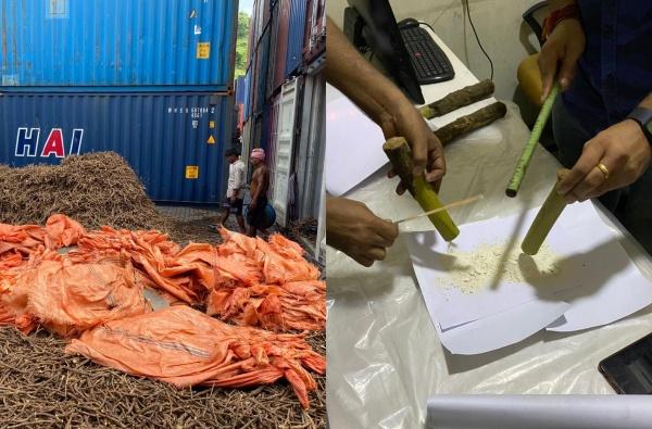 नवी मुंबईत तब्बल 1 हजार कोटीचं ड्रग जप्त, आयुर्वेदिक औषधाच्या नावाखाली अफगाणिस्तानमार्गे तस्करी