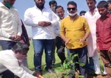 साताऱ्यात प्रत्येक शहीद जवानामागे एक झाड, सयाजी शिंदेंची संकल्पना
