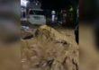 पुण्यात पावसाचा हाहाकार, काळजाचा ठोका चुकवणारा VIDEO व्हायरल