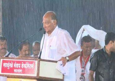 Sharad Pawar Satara Rain Speech | भरपावसातील शरद पवारांच्या सभेची वर्षपूर्ती, राष्ट्रवादीने भाजपला पुन्हा डिवचलं