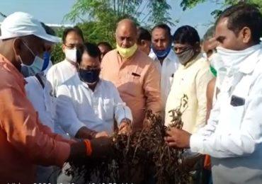 पाहणी नको, तात्काळ मदत द्या...! मंत्री विजय वडेट्टीवारांसमोर शेतकऱ्यांची घोषणाबाजी