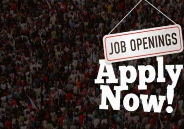नोकरी शोधताय? पुण्यातील टेक सेंटरमध्ये नव्या 1000 इंजिनिअर्सच्या जागांची भरती