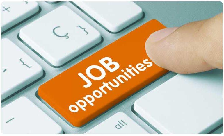 Fact Check : कोरोना संकटात बेरोजगारांना नोकरी देतंय कृषी मंत्रालय! जाणून घ्या सत्य