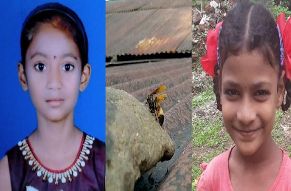 साताऱ्यात टेरेसवर खेळणाऱ्या चिमुकल्यांवर गांधील माश्यांचा हल्ला, दोन मुलींचा मृत्यू