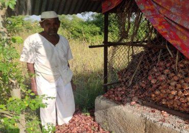 PHOTO: कांद्याला सोन्याचा भाव; चोरट्यांच्या वक्रदृष्टीमुळे शेतकरी हवालदिल