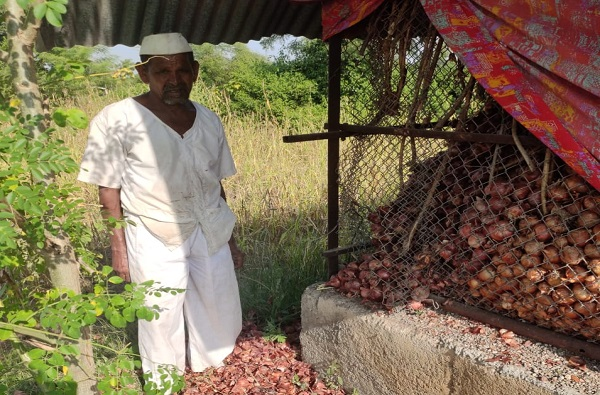 robbers stole onion stock in Nashik due to Onions rate hike
