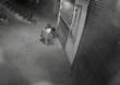 इंदापुरात चोरट्यांचा एका रात्रीत सात दुकानांवर डल्ला, लाखाचा ऐवज लंपास, चोरीचा प्रकार सीसीटीव्हीत कैद