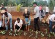 एका दाण्याचे शंभर दाणे करण्याची ताकद फक्त शेतीत, मंत्री एकनाथ शिंदे स्ट्रॉबेरीच्या शेतात