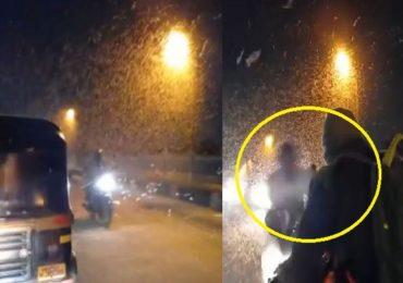 किड्यांचा मारा चुकवताना विचित्र अपघात, सांगलीतील आयर्विन पुलावर किड्यांचा भडिमार