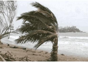 Cyclone Burevi : तामिळनाडू, पुद्दुचेरीला पावसाने झोडपले, केरळ-तामिळनाडूतील 11 जिल्ह्यांमध्ये सुट्टी जाहीर
