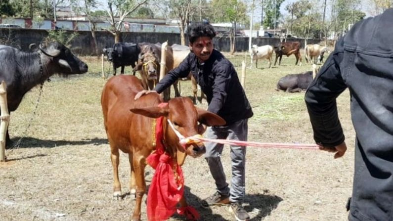 msd, mahendra singh dhoni, birsa agriculture university, Agriculture Festival, dhoni farm house,