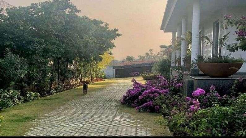 MS-Dhoni-Farm-house